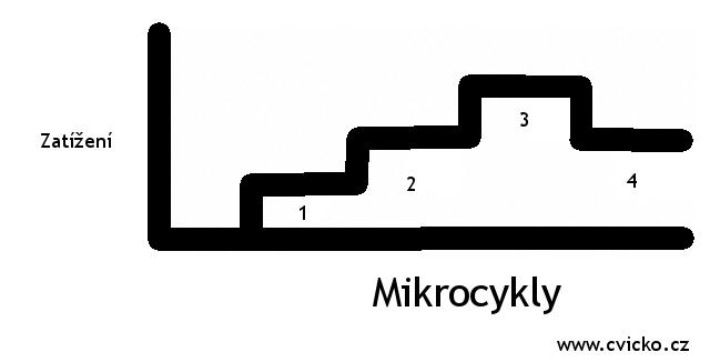 cvicko_mikrocykly