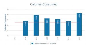 caloriescons
